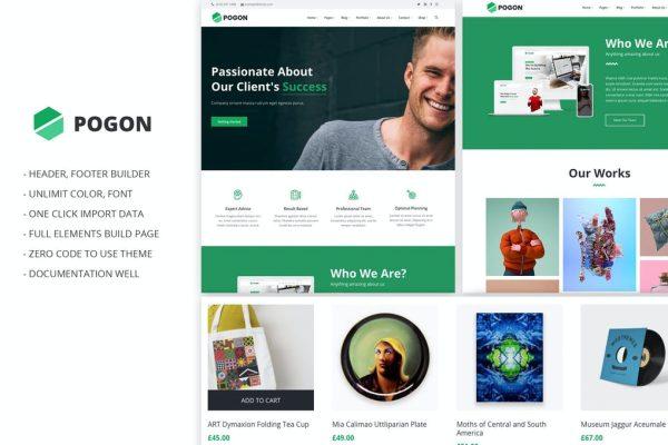 Standard Professional Website